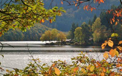 Schnorcheln am Kronenburger See